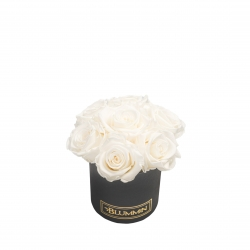 BOUQUET WITH 7 ROSES - MIDI BLACK BOX WITH WHITE ROSES