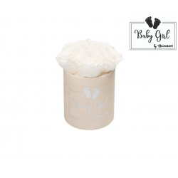 BABY GIRL - NUDE VELVET BOX WITH 5 WHITE ROSES