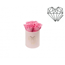 XS LOVE - LIGHT PINK VELVET BOX WITH BABY PINK ROSES