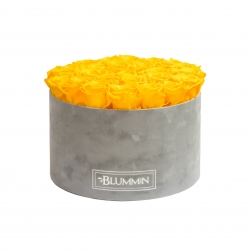 EXTRA LARGE BLUMMIN LIGHT GREY VELVET BOX WITH YELLOW ROSES