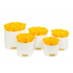 CREAM WHITE CERAMIC POT WITH YELLOW ROSES