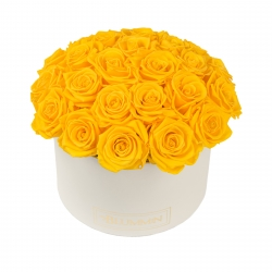 BOUQUET WITH 25 ROSES - LARGE CREAMY BOX WITH YELLOW ROSES