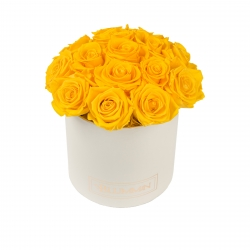BOUQUET WITH 15 ROSES - MEDIUM CREAMY BOX WITH YELLOW ROSES
