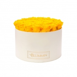 EXTRA LARGE BLUMMiN CREAM WHITE BOX WITH YELLOW ROSES