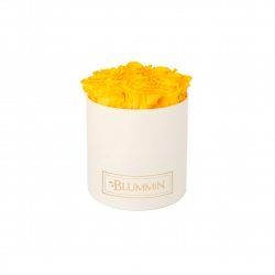 MEDIUM CLASSIC CREAM BOX WITH SUNNY YELLOW ROSES