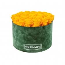 EXTRA LARGE BLUMMIN GREEN VELVET BOX WITH YELLOW ROSES