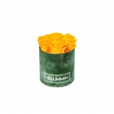 SMALL BLUMMiN GREEN VELVET BOX WITH YELLOW ROSES