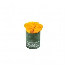 XS BLUMMIN GREEN VELVET BOX WITH YELLOW ROSES