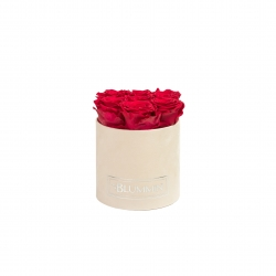 SMALL NUDE VELVET BOX WITH ROSEBERRY ROSES