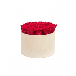 LARGE NUDE VELVET BOX WITH ROSEBERRY ROSES