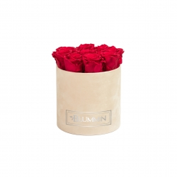 MEDIUM NUDE VELVET BOX WITH ROSEBERRY ROSES