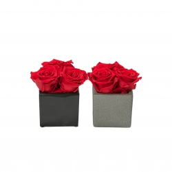 CERAMIC POT WITH 3 VIBRANT RED ROSES