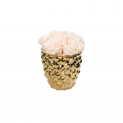 GOLDEN CERAMIC WITH 5 ICE PINK ROSES