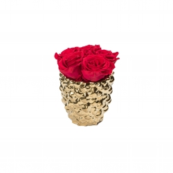 GOLDEN CERAMIC WITH 5 ROSEBERRY ROSES