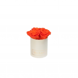 XS BLUMMIN - CREAMY BOX WITH ORANGE ROSES