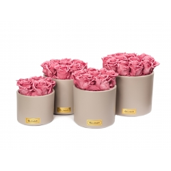 BEIGE CERAMIC POT WITH VINTAGE PINK ROSES