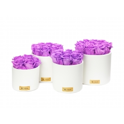 WHITE CERAMIC POT WITH VIOLET VAIN ROSES