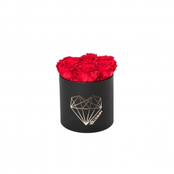 SMALL LOVE - BLACK BOX WITH VIBRANT RED ROSES