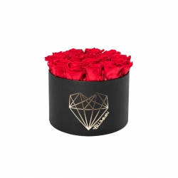 LARGE LOVE - BLACK BOX WITH VIBRANT RED ROSES