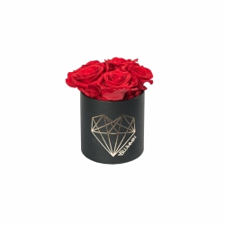 MIDI LOVE - BLACK BOX WITH VIBRANT RED ROSES