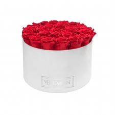 EXTRA LARGE BLUMMIN WHITE VELVET BOX WITH VIBRANT RED ROSES