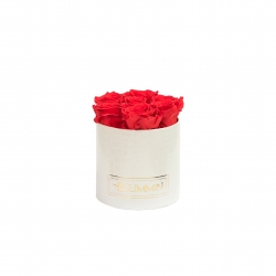 SMALL BLUMMiN - WHITE LEATHER BOX WITH VIBRANT RED ROSES