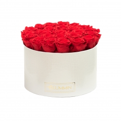 XL BLUMMiN - WHITE LEATHER BOX WITH VIBRANT RED ROSES