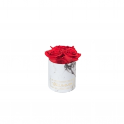XS WHITE MARBLE BOX WITH VIBRANT RED ROSES