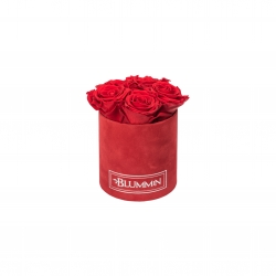 MIDI BLUMMiN RED VELVET BOX WITH VIBRANT RED ROSES