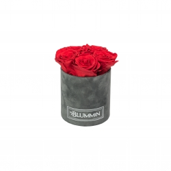 MIDI BLUMMiN DARK GREY VELVET BOX WITH VIBRANT RED ROSES