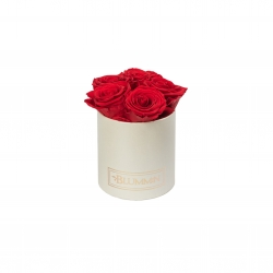 MIDI BLUMMiN CREAM BOX WITH  VIBRANT RED ROSES