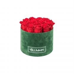 LARGE BLUMMiN - GREEN VELVET BOX WITH VIBRANT RED ROSES