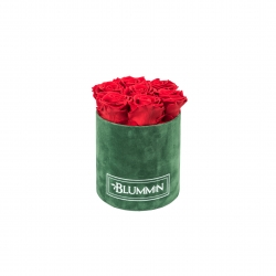 SMALL BLUMMiN - GREEN VELVET BOX WITH VIBRANT RED ROSES