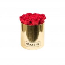 MEDIUM BLUMMiN - GOLDEN BOX WITH VIBRANT RED ROSES
