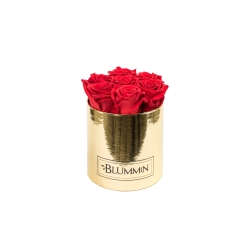 SMALL BLUMMiN - GOLDEN BOX WITH VIBRANT RED ROSES