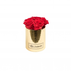 MIDI BLUMMiN - GOLDEN BOX WITH VIBRANT RED ROSES