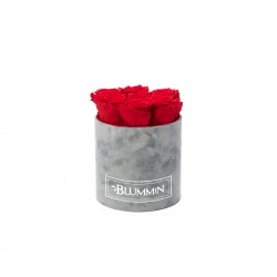 SMALL BLUMMiN - LIGHT GREY VELVET BOX WITH VIBRANT RED ROSES