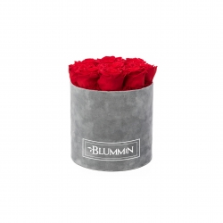 MEDIUM VELVET LIGHT GREY BOX WITH VIBRANT RED ROSES