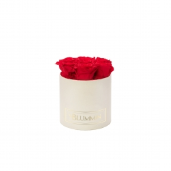 SMALL BLUMMiN - CREAM WHITE BOX WITH VIBRANT RED ROSES