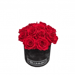 BOUQUET WITH 11 ROSES - SMALL BLACK VELVET BOX WITH VIBTANT RED ROSES