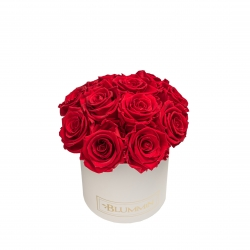 BOUQUET WITH 11 ROSES - SMALL CREAMY BOX WITH VIBRANT RED ROSES