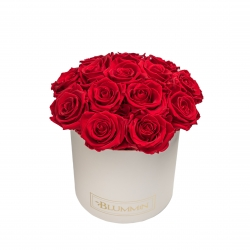 BOUQUET WITH 15 ROSES - MEDIUM CREAMY BOX WITH VIBRANT RED ROSES