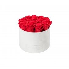 LARGE  WHITE VELVET BOX WITH VIBRANT RED ROSES
