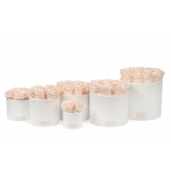 WHITE CERAMIC POT WITH ICE PINK ROSES