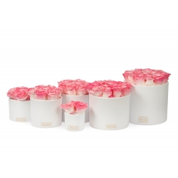 WHITE CERAMIC POT WITH  LOVELY PINK ROSES