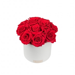 BOUQUET WITH 11 ROSES - WHITE CERAMIC POT WITH VIBRANT RED ROSES
