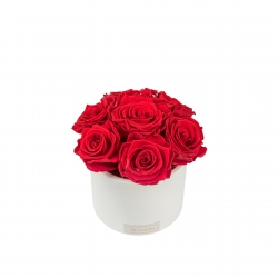 BOUQUET WITH 7 ROSES - WHITE CERAMIC POT WITH VIBRANT RED ROSES