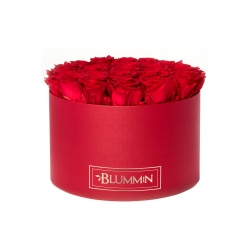 EXTRA LARGE RED BOX WITH  VIBRANT RED ROSES