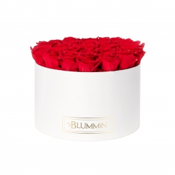 EXTRA LARGE WHITE BOX WITH VIBRANT RED ROSES