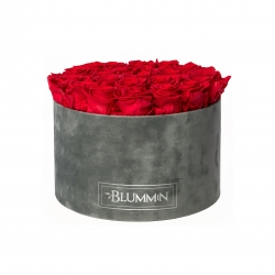 EXTRA LARGE BLUMMiN DARK GREY VELVET BOX WITH VIBRANT RED ROSES